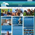 Boom Racing Throughbreds website and branding